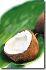 coconut on the leaf