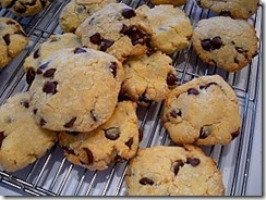 Coconut Chocolate Chip Cookies 1